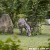 WJB_2009_06_23_154