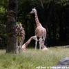 WJB_2009_06_23_168_1