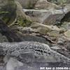 WJB_2009_06_23_104