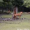 WJB_2009_06_23_067