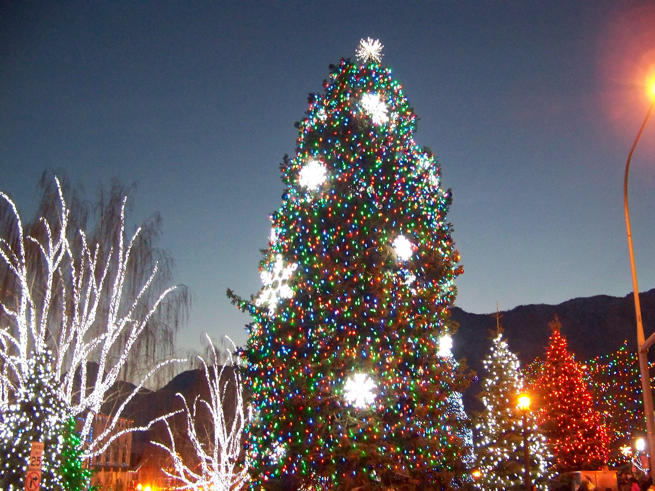"""I liked the big snowflakes that were among the Christmas lights on this tree. [Leavenworth, WA - December 2013 - <b><a target=""""_new"""" href=""""http://youtu.be/NqCqDCOY_tc"""">Watch my video here</a></b>]"""