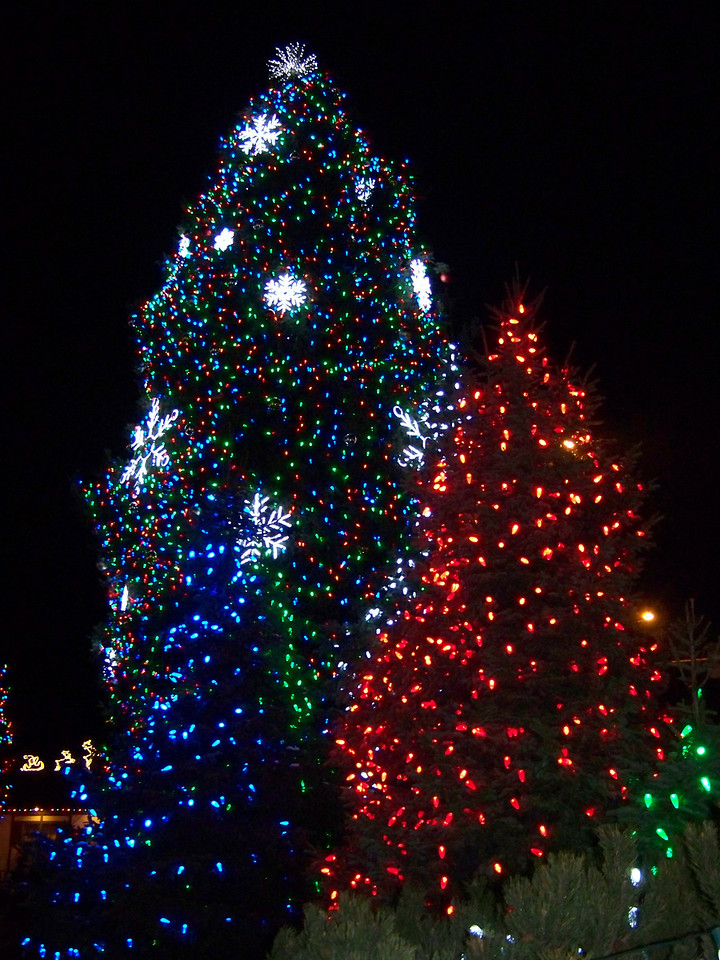 """Same view of the Christmas lights as the previous shot,  but taken with the flash. [Leavenworth, WA - December 2013 - <b><a target=""""_new"""" href=""""http://youtu.be/NqCqDCOY_tc"""">Watch my video here</a></b>]"""