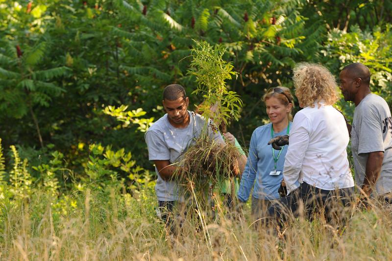 110727109 - Plant rescue at Prince William campus