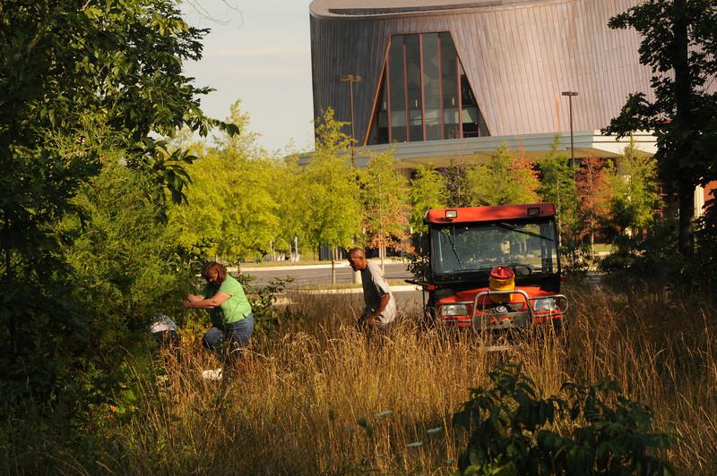 110727100 - Plant rescue at Prince William campus