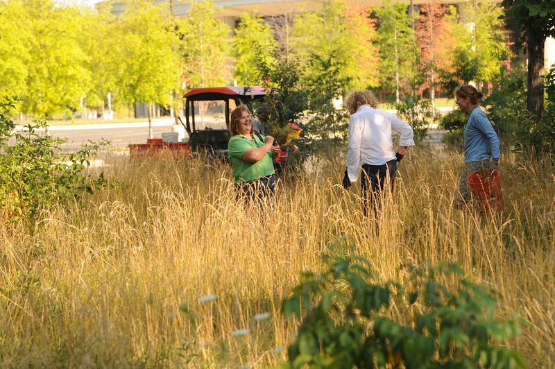 110727091 - Plant rescue at Prince William campus