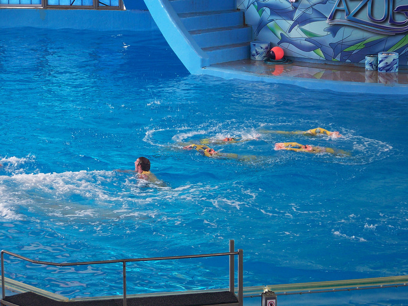 "There's the ""clown"" in the water with some synchronized swimmers behind him.<br /> [SeaWorld San Antonio - Azul show]"