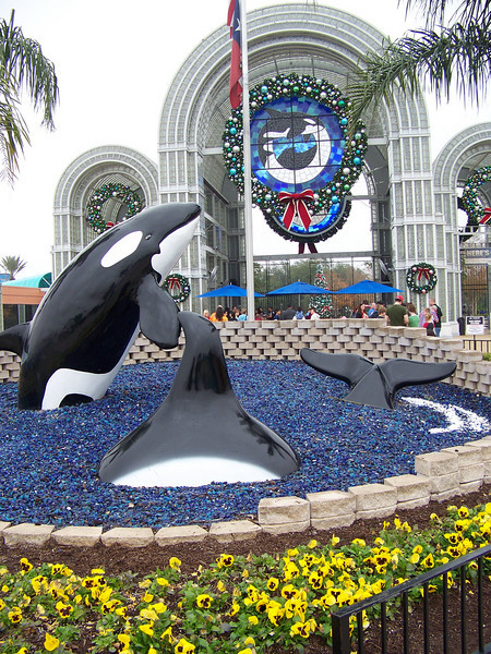 Orca sculptures greet you in the entry plaza.<br /> [SeaWorld San Antonio]