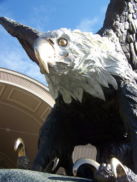 Eek!!  I wouldn't want to see those talons bearing down on me!<br /> [Seven Feathers Resort in Canyonville, OR]