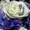 ring 05