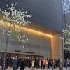 anniewatt_10612-Museum Of Modern Art