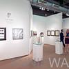 AWA_2952 ANY 116 Long-Sharp Gallery