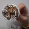 02-Shell ring