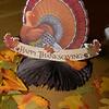 DSC_2006-turkey