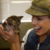 AWP_2381 2 kitties, Beth Stern