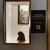anniewatt_18653A Galerie Dumonteil