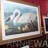 z__DPL6145 Aution Items