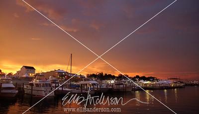 Harbor Fest 2015 9144