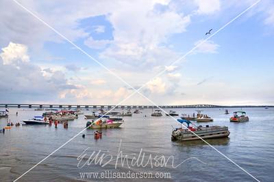 Harbor Fest 2015 8153