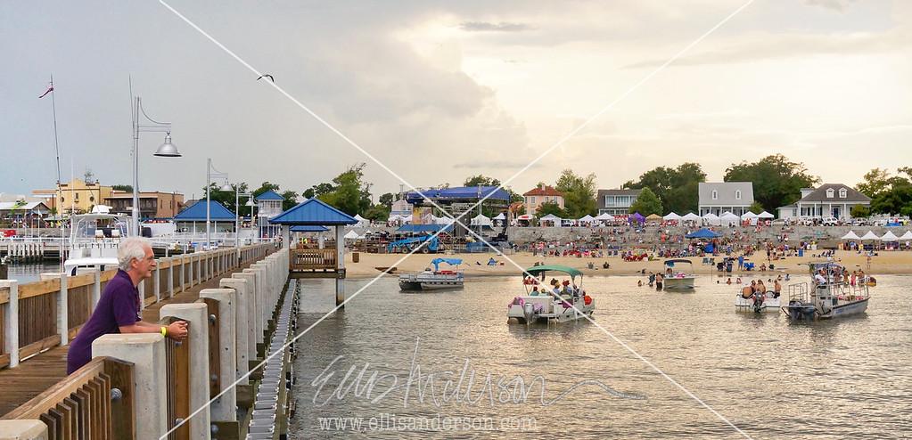 Harbor Fest 2015 8174 crop