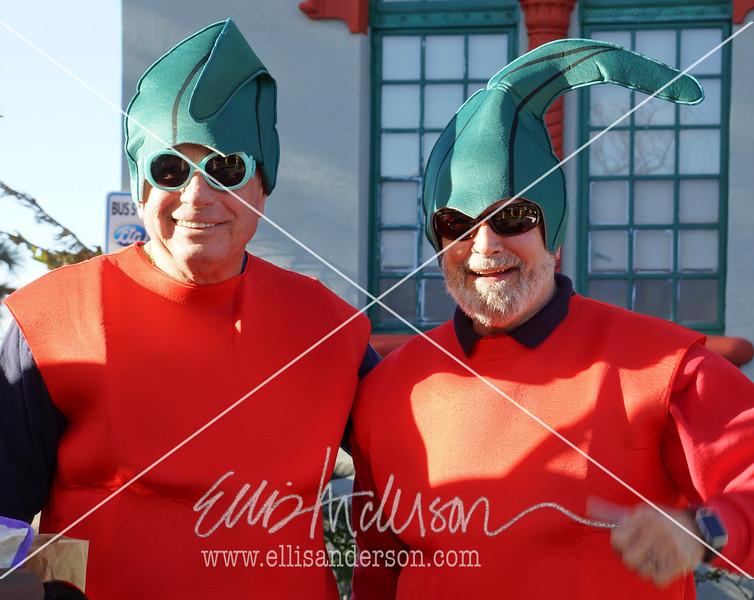 Seahorse Parade 2016 4491