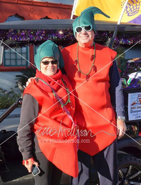 Seahorse Parade 2016 4496