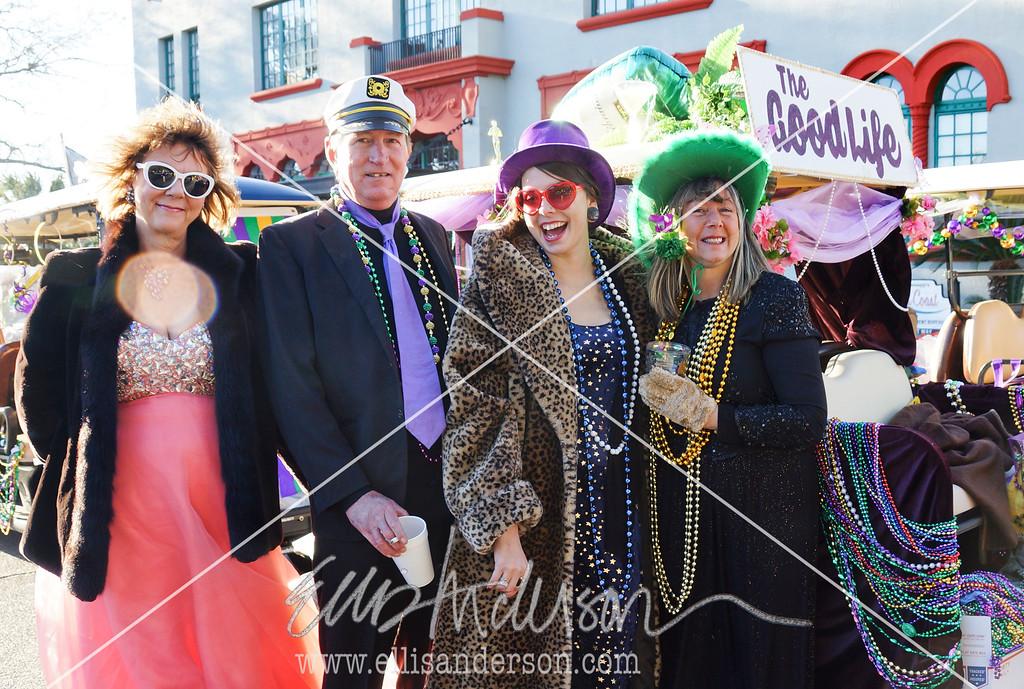 Seahorse Parade 2016 4583