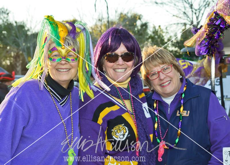 Seahorse Parade 2016 4716
