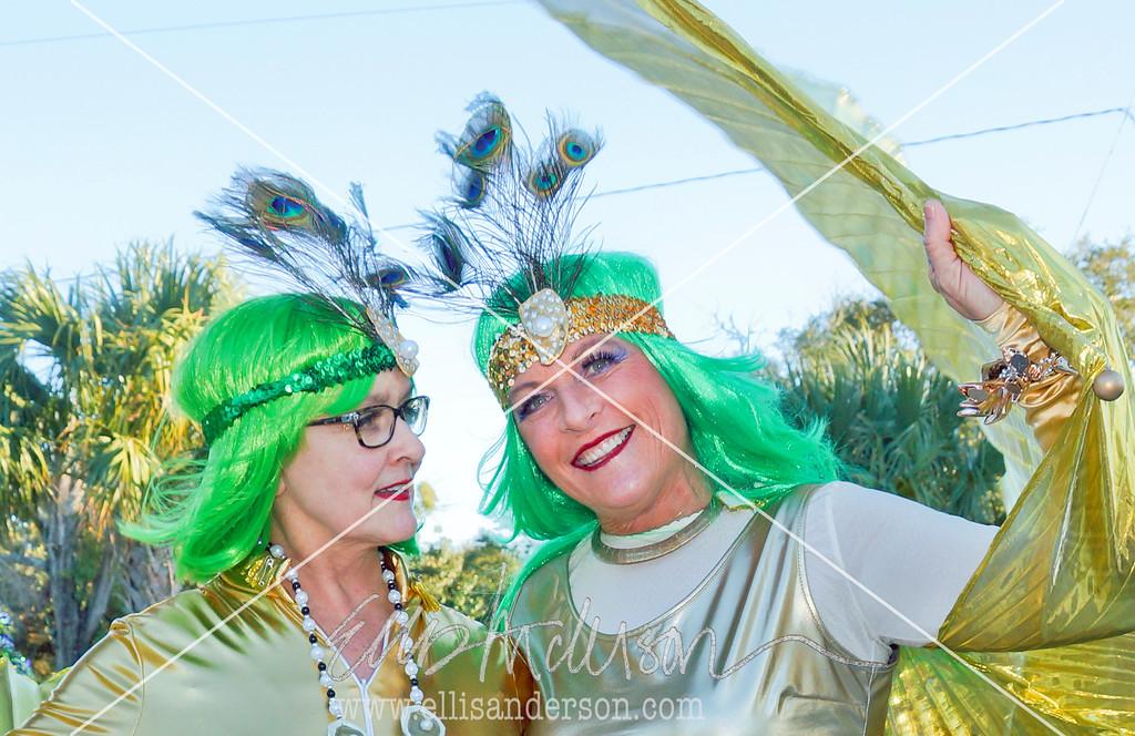 Seahorse Parade 2016 4651