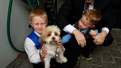Milo Brasier holding Maple; Samson Brasier petting Maple