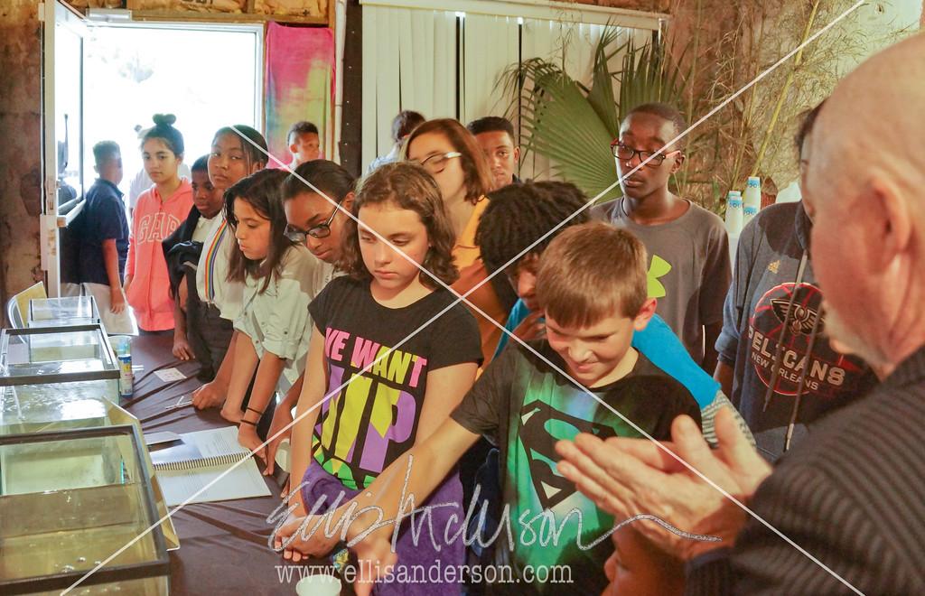 Magnolia Bayou Art Show 8722