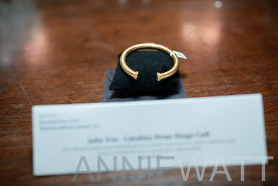 z__DPL6138 Aution Items