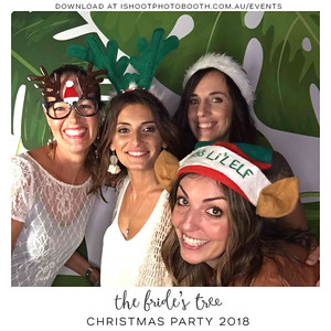 Bride's_Tree_Christmas_Party_-overlay-5f4329-01