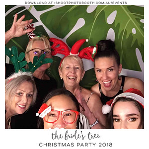 Bride's_Tree_Christmas_Party_-overlay-4492f4-01