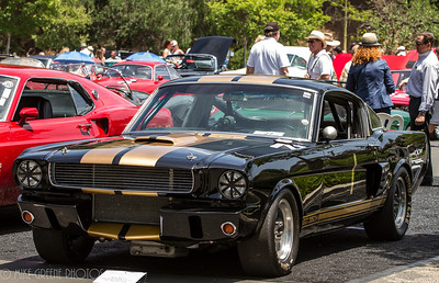 1966 Ford Shelby GT350.  Greystone Mansion Concours d'Elegance