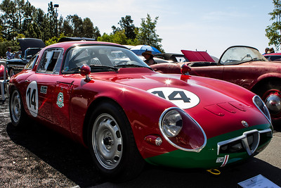 Winner!  Alfa Romeo 1965 Giulia TZ, owned by the William Lyon family took home the Best of Show Concours d'Sport award.  Greystone Mansion Concours d'Elegance