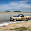 #18 Jim Reed, 1966 Shelby GT 350
