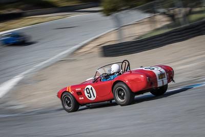 #91 Tim Park, 1964 Cobra