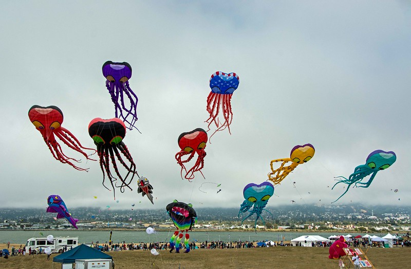 Berkeley Kites Festival, July 2016