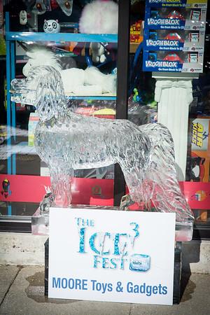 i17s DWA IceFest '19 (29)
