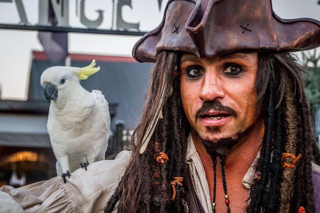 Captain Jack With Bird