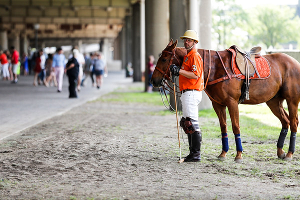 A polo player walks around with his horse under the interstate before the start of the event.