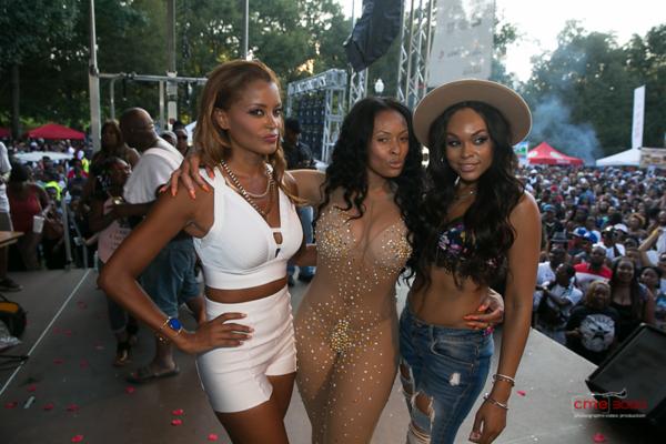 Pure Heat Community Festival - September 6, 2015 in Atlanta, GA