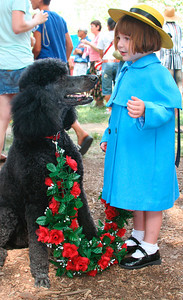 Ready for the Poddle Parade: http://www.frenchfestival.com/poodle.html