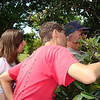 Robby (me) and Clarissa Clark learning how and when to pick a sapodilla.