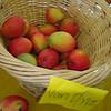 My first taste of a Van Dyke mango.  I wasn't too impressed.