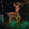 A reindeer is made up of lights at the St. Louis Zoo Wildlights holiday celebration to allow visitors to stroll the park and enjoy lights with an animal theme.