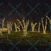 To celebrate the season, the St. Louis Zoo lights up different areas and trees of the zoo giving visitors a chance to enjoy wonderful lighted displays with an animal theme.