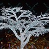 To celebrate the season, the St. Louis Zoo lights up different areas of the zoo giving visitors a chance to enjoy wonderful lighted displays with an animal theme.  One of the most popular attractions is this totally wrapped and lit tree.