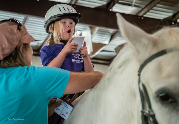 WindWalkers Therapeutic Riding  and Learning Center