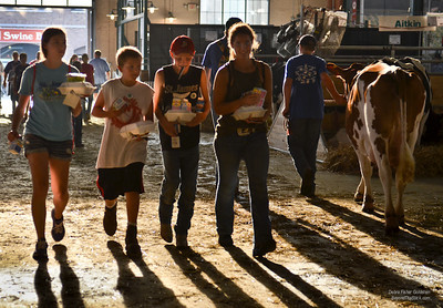 Dairy In; Dairy Out  ©Debra Fisher Goldstein-0526